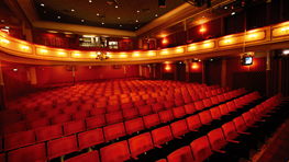 Live shows at Aalborg Theater